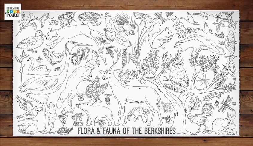 60 animals & 12 plants of the Berkshire to color!